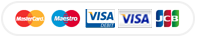 accepted payments VISA PayPal MasterCard